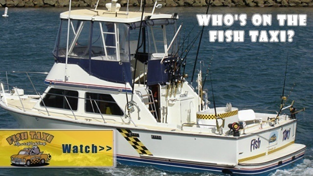 video watch - Deep Sea Fishing Charter Oceanside San Diego CA